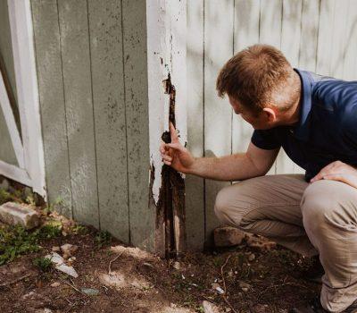 Dooley-Termite-Inspections-2-1024x675